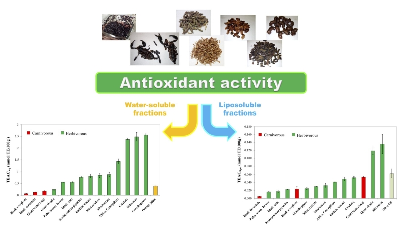 bugs antioxidants