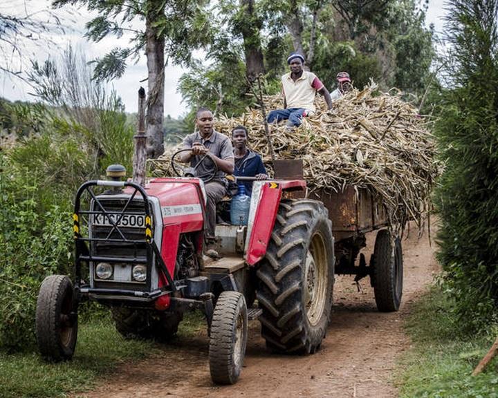 Növekvő élelmiszerimport költségek fokozzák a legszegényebb országok terheit