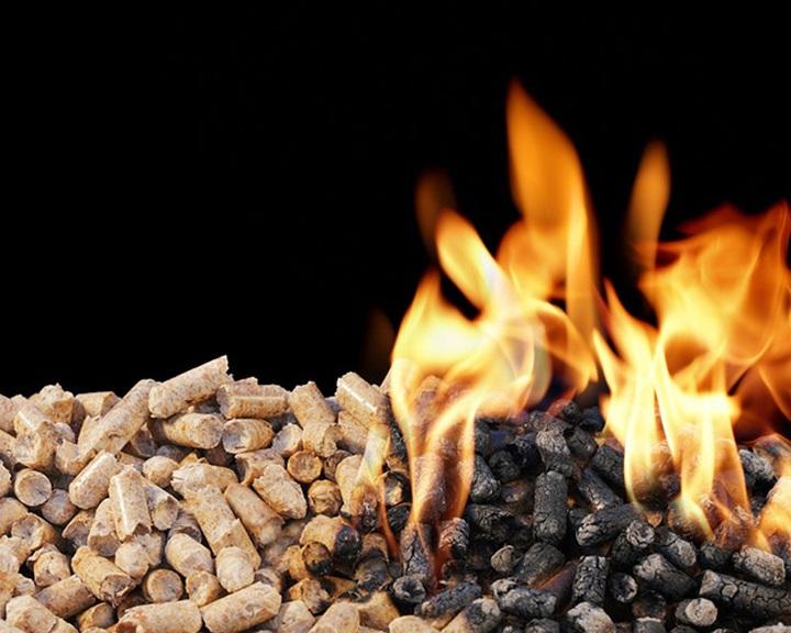 EASAC : tévedés, hogy jobb fával fűteni, mint szénnel