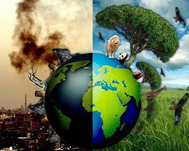 Túlfogyasztás napja: hét hónap alatt feléltük az éves erőforrásainkat