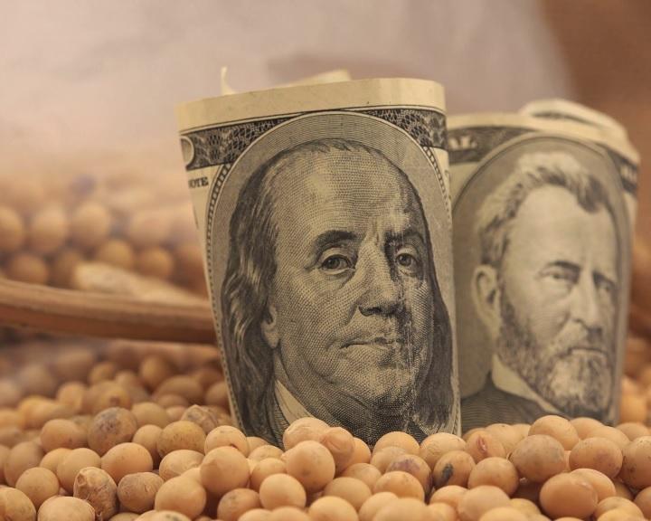 Több mint 280 százalékkal nőtt az amerikai szójabab exportja az EU-ba