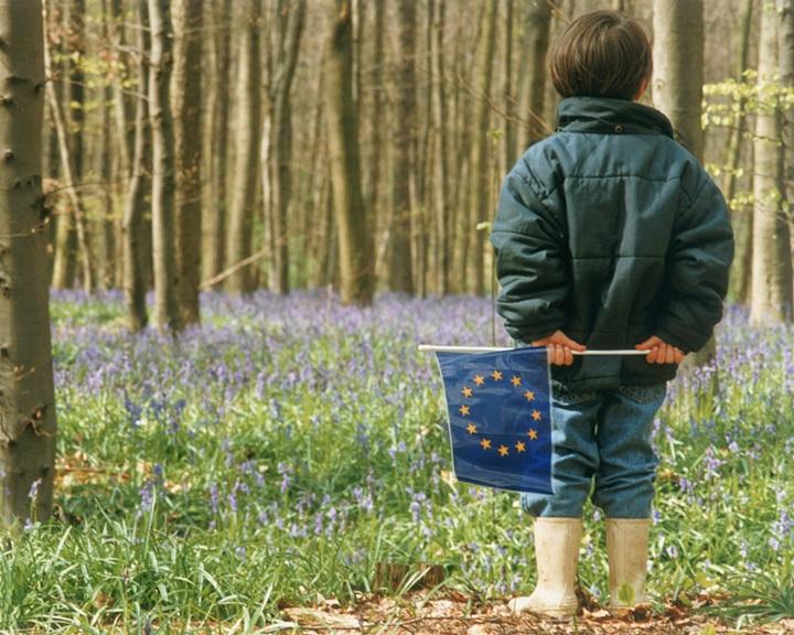 Csaknem minden második gyerek házasságon kívül születik az Európai Unióban