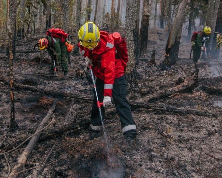 Tíz év alatt csaknem tízszeresére nőtt a sarkvidéki tüzek száma Oroszországban