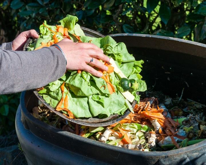 Az EU-s háztartásokban 17 milliárd kilogramm zöldséget és gyümölcsöt dobnak ki évente