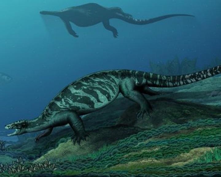 A teknősök páncéljának evolúciójához nyújt magyarázatot egy új lelet