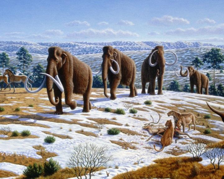 Feléleszthetik a gyapjas mamutokat egy 5.9 millió dolláros szibériai klónközpontban