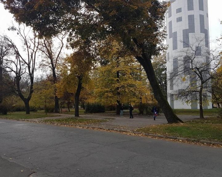 Félmilliárdból újul meg Mohácson a Szepessy park és környéke