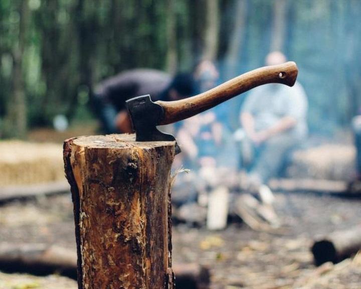 Folytatja az internetes tűzifahirdetések ellenőrzését a Nébih