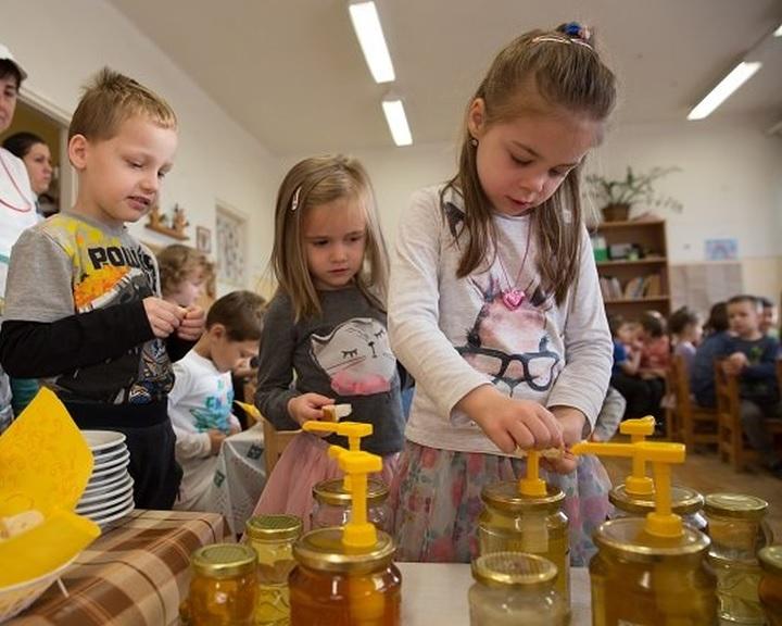 Nagy István: kampány indul a mézfogyasztás ösztönzésére