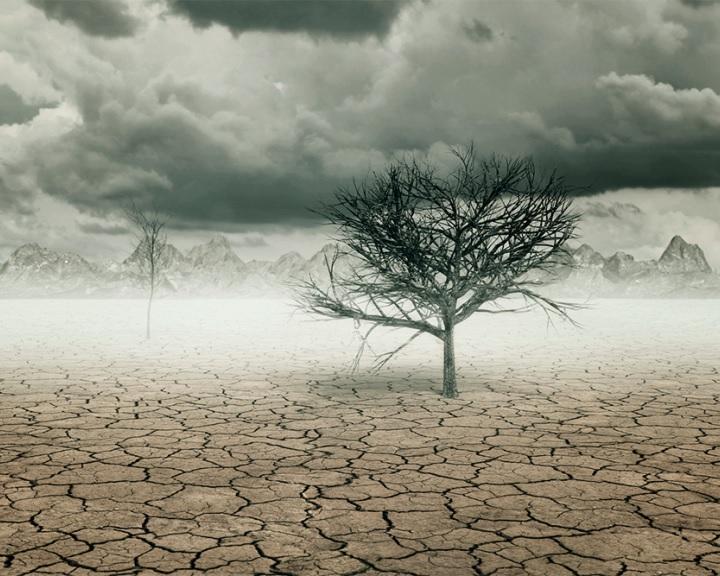 A klímaváltozás beindíthatja a kihalás dominóeffektusát