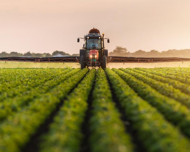 A fotoszintézis optimalizálásával növelnék a növények terméshozamát