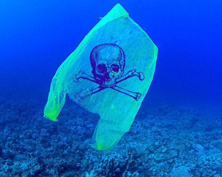 Megmentheti az óceánokat: percek alatt bomlik le a vízben az új típusú műanyag