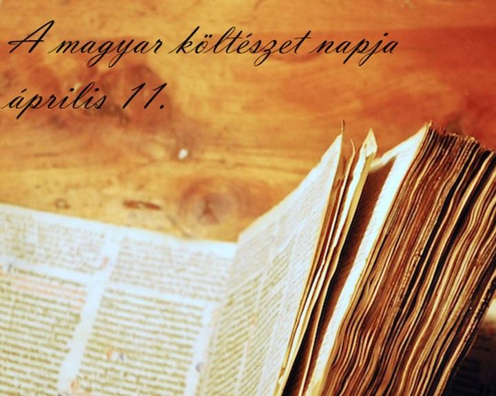 A költészet napja - Látványos cetli installáció 22 külföldi magyar intézetben