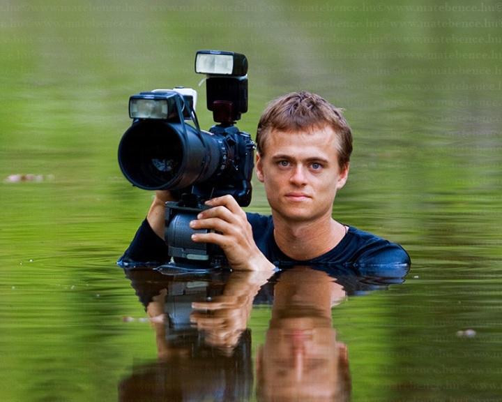 Máté Bence békás fotója nyert a World Press Photo természetfotó kategóriájában