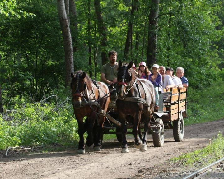 Családi programokkal, sétahajózással kezdődik az idegenforgalmi idény a Gemencben