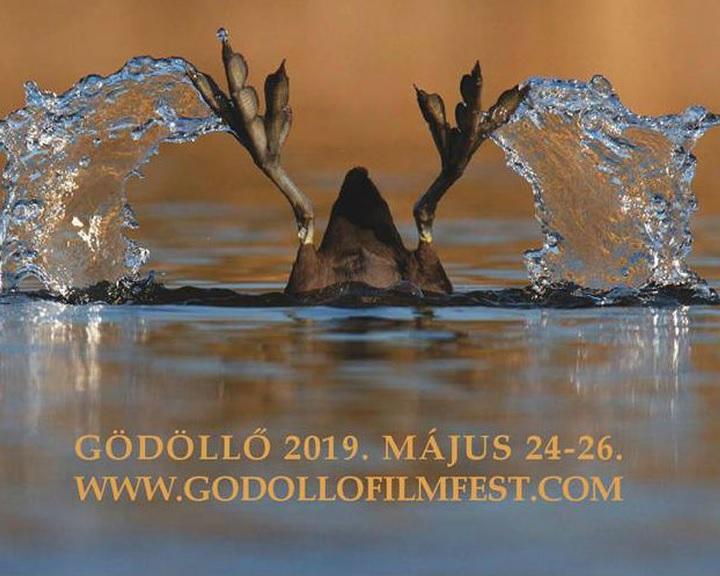 Ma kezdődik a gödöllői Nemzetközi Természetfilm Fesztivál