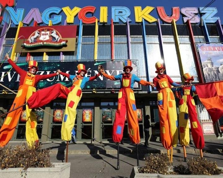 Cirkuszi emlékeket gyűjt jubileumi kiállításához a MACIVA