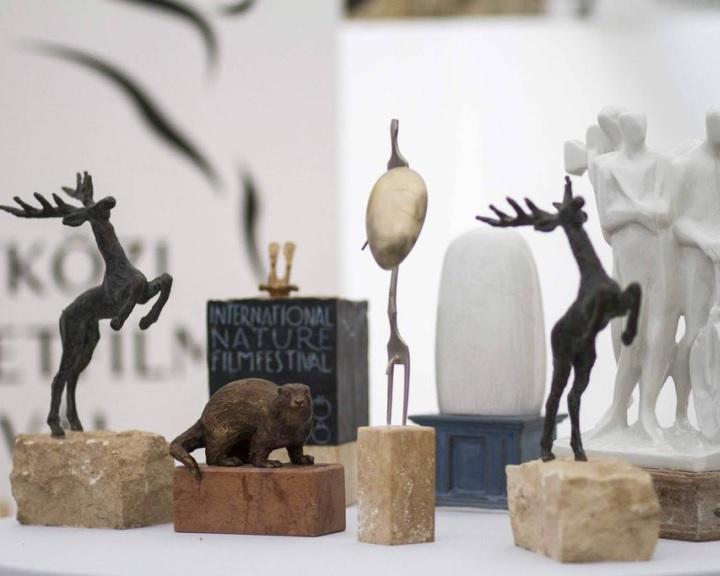 A Bálna bölcsesség nyerte a gödöllői természetfilm fesztivál fődíj