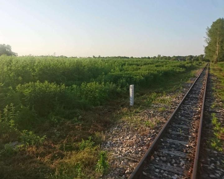 Az elherdált magyar föld utóhatásai: rettegnek a Balatonfenyvesiek