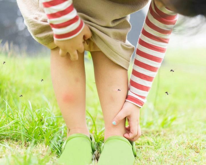 Mi dönti el, kit csípnek jobban a szúnyogok?