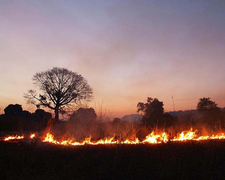 Az afrikai erdő- és bozóttüzek füstje trágyázza az Amazonas esőerdőit és az óceánokat
