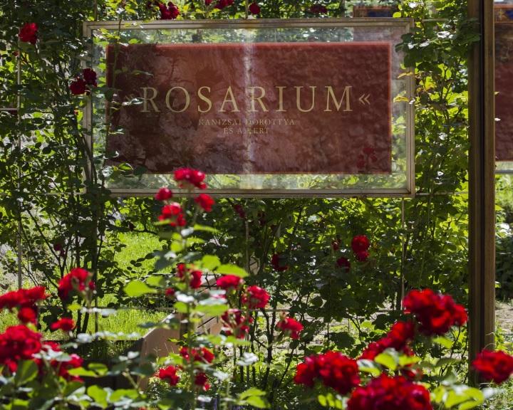 Megnyitotta kapuit a megújult siklósi Rosarium