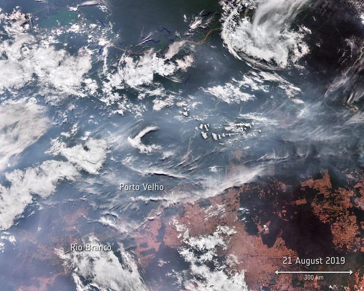 Műholdfelvételek szerint a tavalyinál mintegy négyszer több tűz tombol az Amazonas vidékén