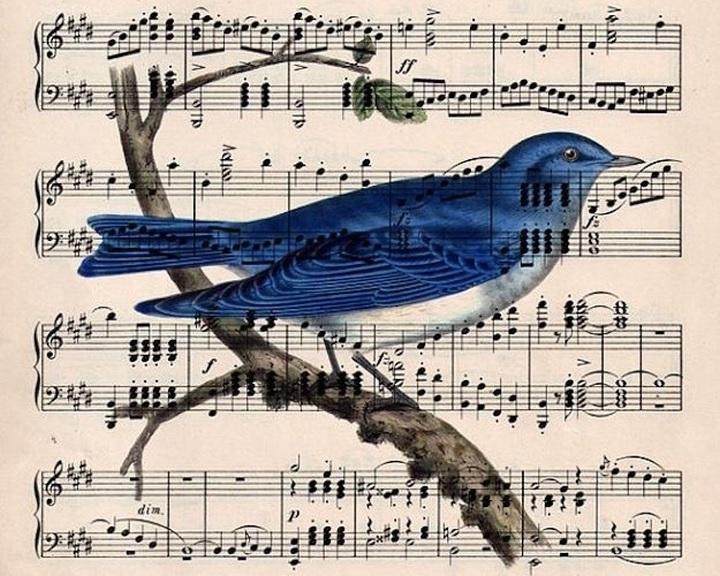 Babaútlevelet adott ki a Pannon Filharmonikusok zenekar