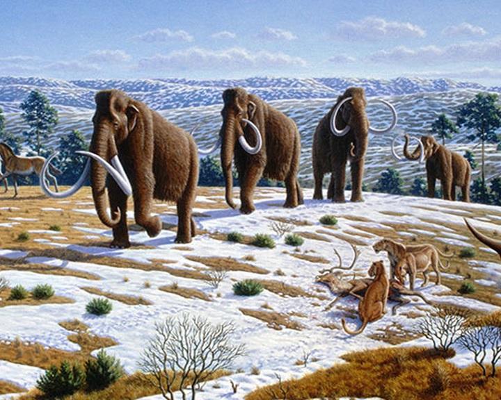 Becsapódás irtotta ki a mamutokat