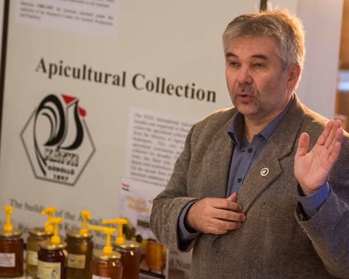 Méhészeti egyesület: egy év alatt húsz százalékkal csökkent a méz ára