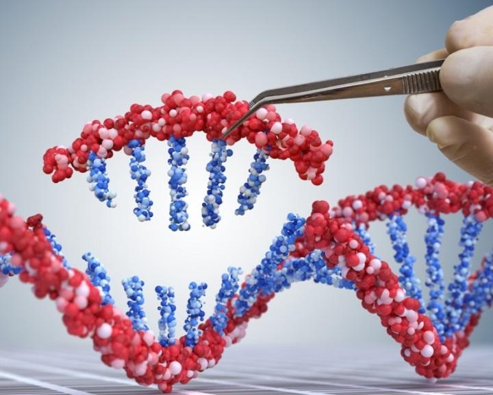 Előre nem látott génmutációkat idézhetett elő a génszerkesztés a kínai babáknál