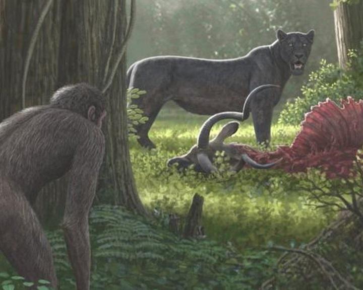 Évmilliók óta alakítja a természetet az emberi tevékenység