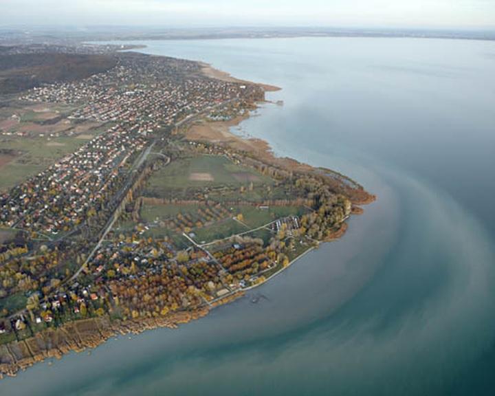 Négy év alatt megkétszereződött a kiirtott nádasok területe a Balatonnál