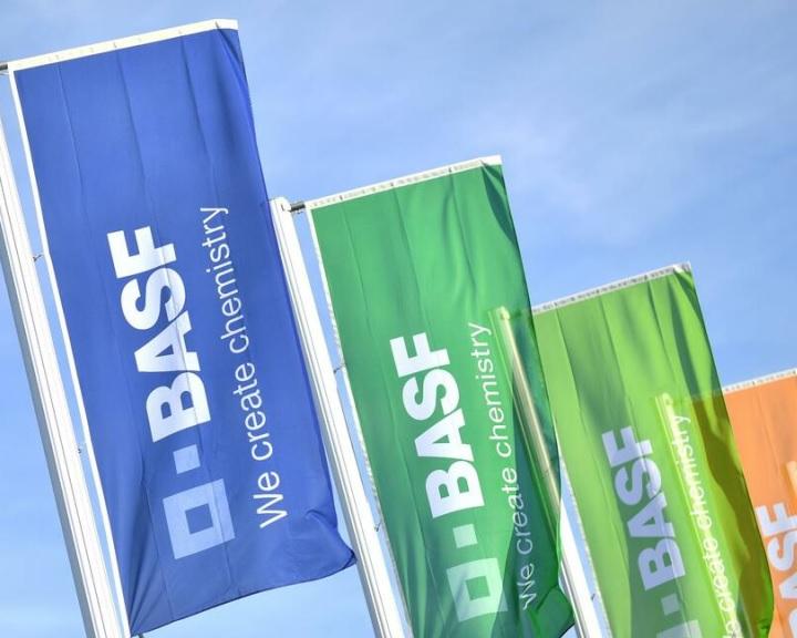 Akkumulátor-alapanyag gyárat létesít Németországban a BASF