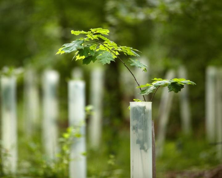 Agrárminiszter: a klímaváltozás gyakorlati megoldások kidolgozását igényli