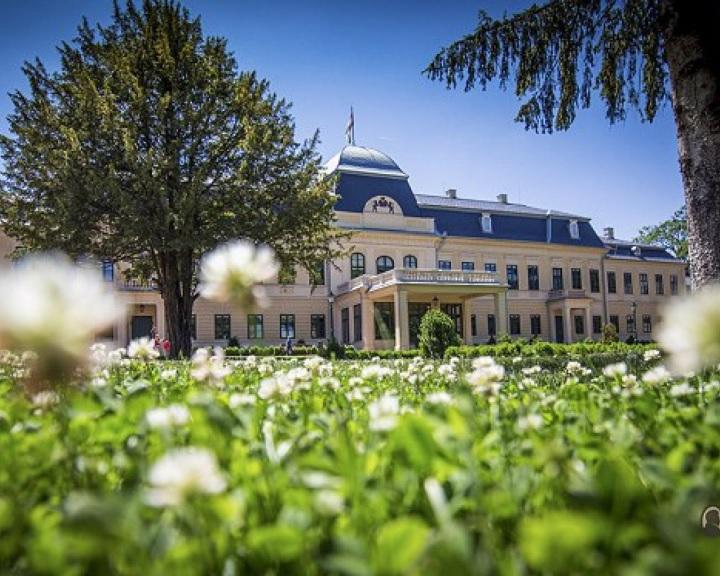 Online tárlatvezetés indul a gyulai várban és az Almásy-kastélyban
