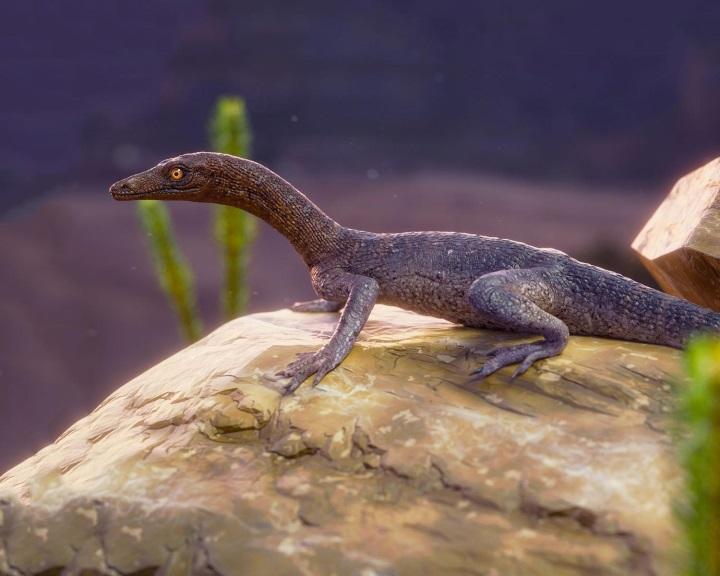 Eddig ismeretlen, ősi hüllőfajt azonosítottak egy brazíliai kövületben