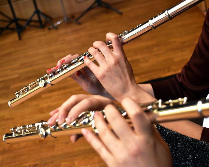 Kisfilmekkel kérik otthonmaradásra az embereket a Pannon Filharmonikusok zenészei