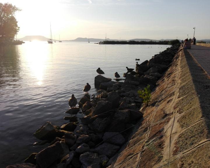 Kutatók a Balaton vízszintszabályozásának átalakítását javasolják