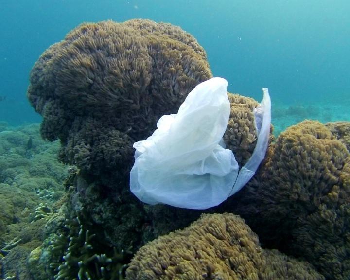 A vízfelszínt tisztító technológiák nem jelentenek megoldást az óceánokban úszó műanyag problémájára