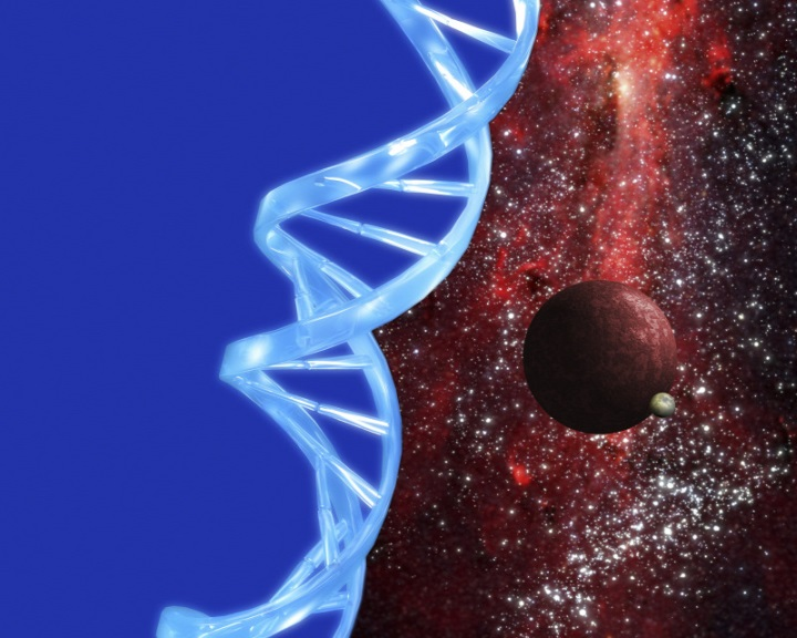 Magyar tudósok kutatják az élet eredetét