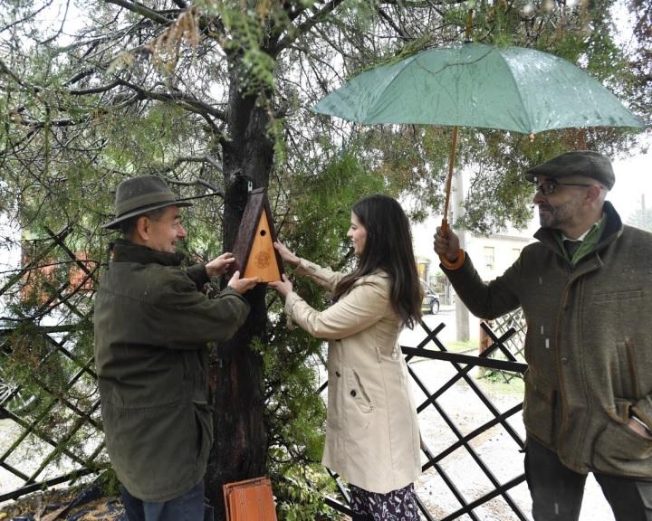 Országos madárodú kihelyezési program indul