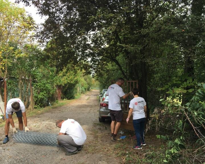 Tucatnyi helyszínen, 275 önkéntessel segített idén a Hauni Baranyában