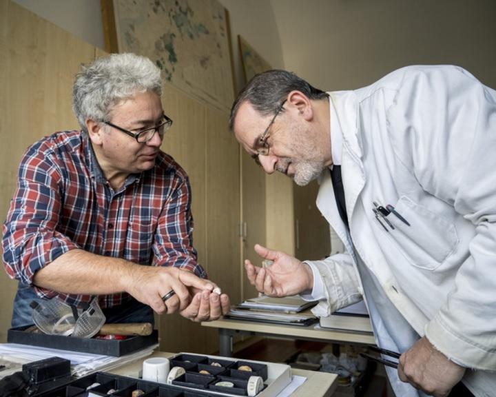 Tenger alatti hőforrásokhoz köthető fosszilis ökoszisztémát azonosítottak a Mecsekben