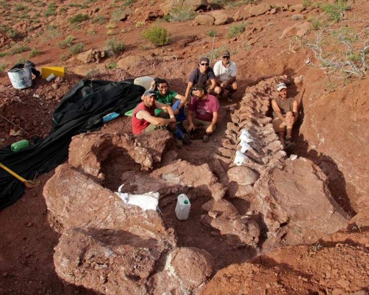 Gigantikus dinoszaurusz maradványait tárták fel Argentínában