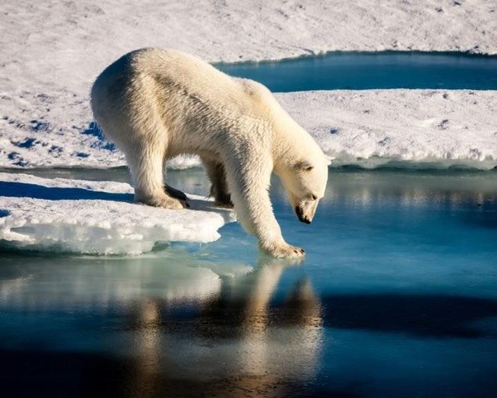 Gyorsabban olvad a Föld jege, mint három évtizede