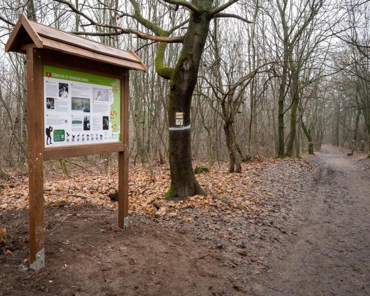 Ezer kilométeres tanösvény-hálózat várja a kirándulókat Magyarország nemzeti parkjaiban