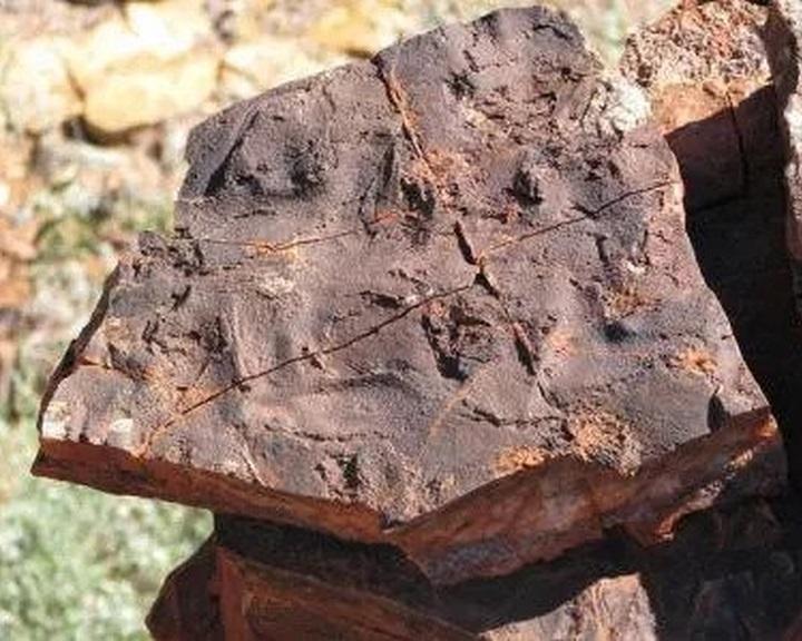 Szerves molekulákat találtak 3,5 milliárd éves kőzetekben