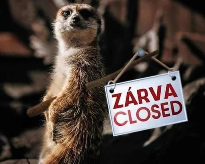 Rendkívüli támogatást kaphatnak a magánalapítású állatkertek