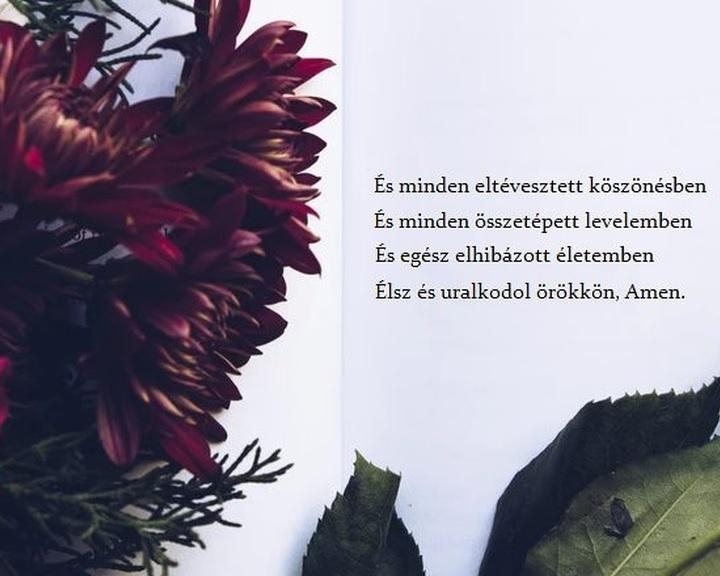 Különleges adatbázist hoztak létre magyar költők műveiből az ELTE kutatói